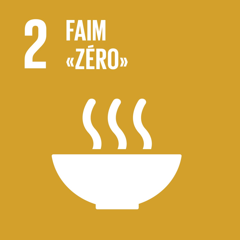 F_SDG-goals_icons-individual-rgb-02.png