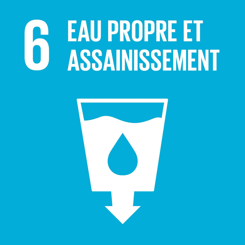 F_SDG-goals_icons-individual-rgb-06.png
