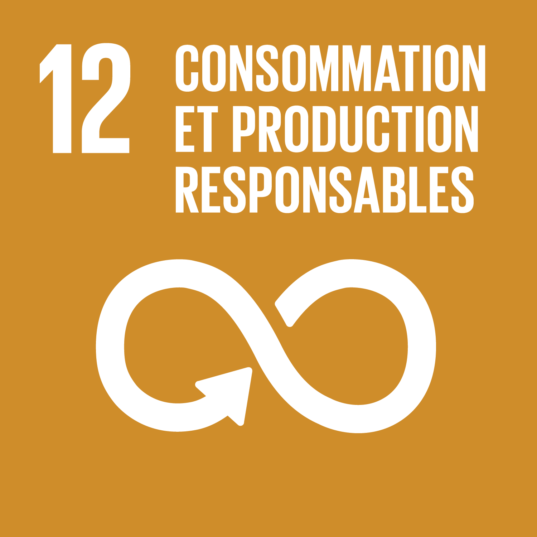 F_SDG-goals_icons-individual-rgb-12.png