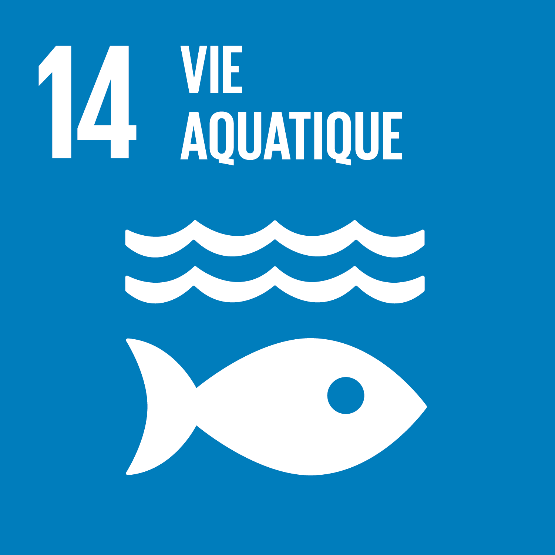 F_SDG-goals_icons-individual-rgb-14.png