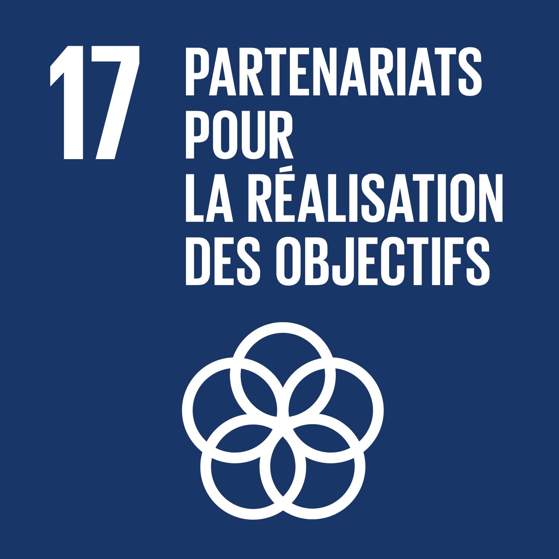 F_SDG-goals_icons-individual-rgb-17.png