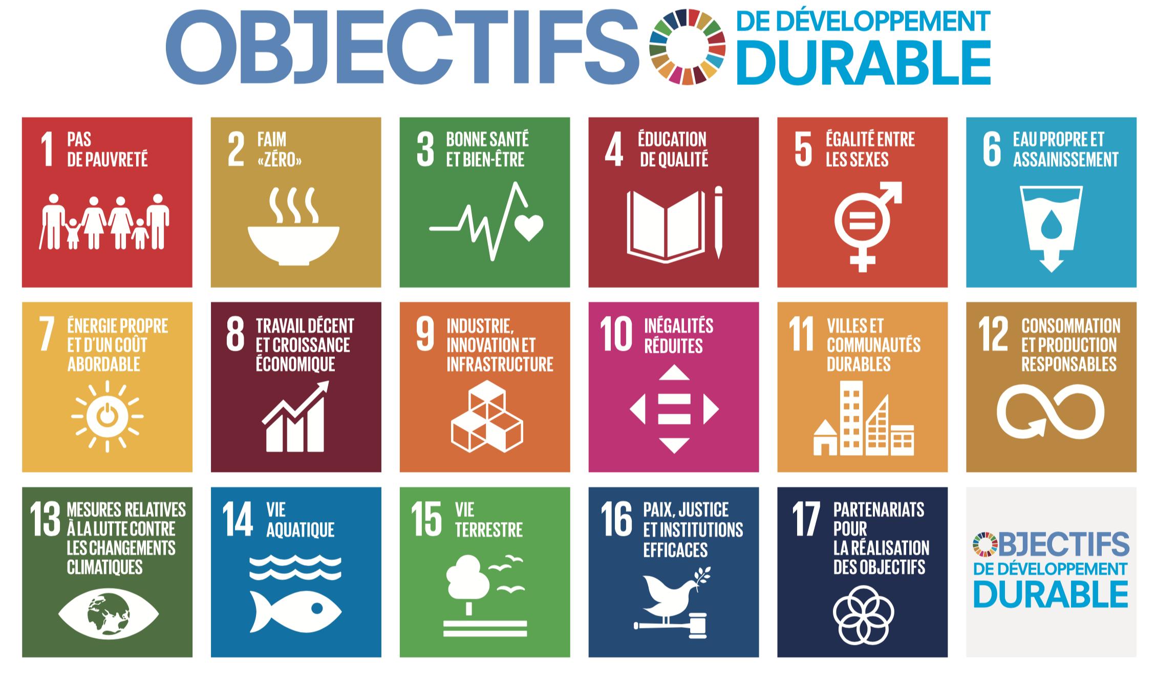 poster_odd_objectifs_de_developpement_durable_logo.jpg.png